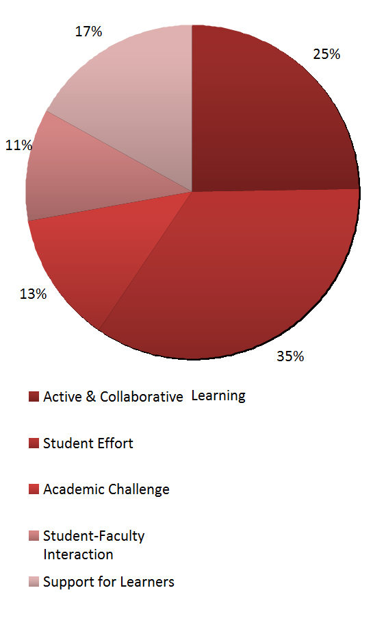Pie chart showing responses to most important benchmark. 25% said Active & Collaborative Learning, 35% said student effort, 13% said academic challenge, 11% said student-faculty interaction, 17% said support for learners.