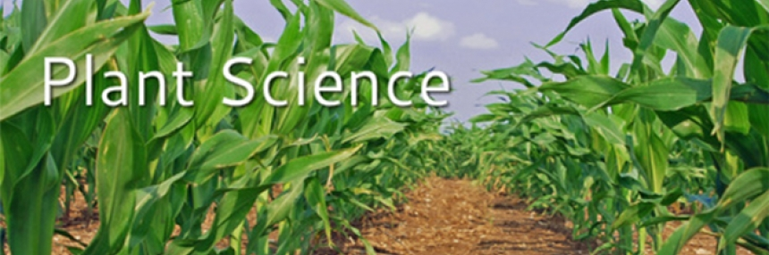 "Plant Science Header - corn crops with words ""Plant Science"""